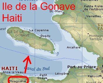 La isla de Gonâve (francés: Île de la Gonâve) es una isla de Haití situada al oeste de Puerto Príncipe en el golfo de Gonâve (18°50′N 73°5′O). La isla es un arrondissement en el departamento Oeste e incluye las comunas de Anse-à-Galets y de Pointe-à-Raquette. Compuesta sobre todo de piedra caliza, la isla tiene 60 km de largo y 15 km de anchura y un área total de 743 km². La isla es, sobre todo, estéril y montañosa con el punto más alto que alcanza 300 m. El paisaje rugoso, estéril y seco impide el cultivo de la tierra para la agricultura, y la población humana en la isla es escasa. La isla fue utilizada como base para los piratas. En 1925 un militar norteamericano, Faustin Wirkus, fue proclamado Rey de la isla con el nombre Faustino II hasta 1929 cuando fue expulsado por el gobierno haitiano.