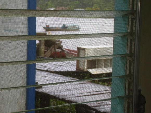 Lo que se ve desde mi ventana. Foto: Marcus Dutra
