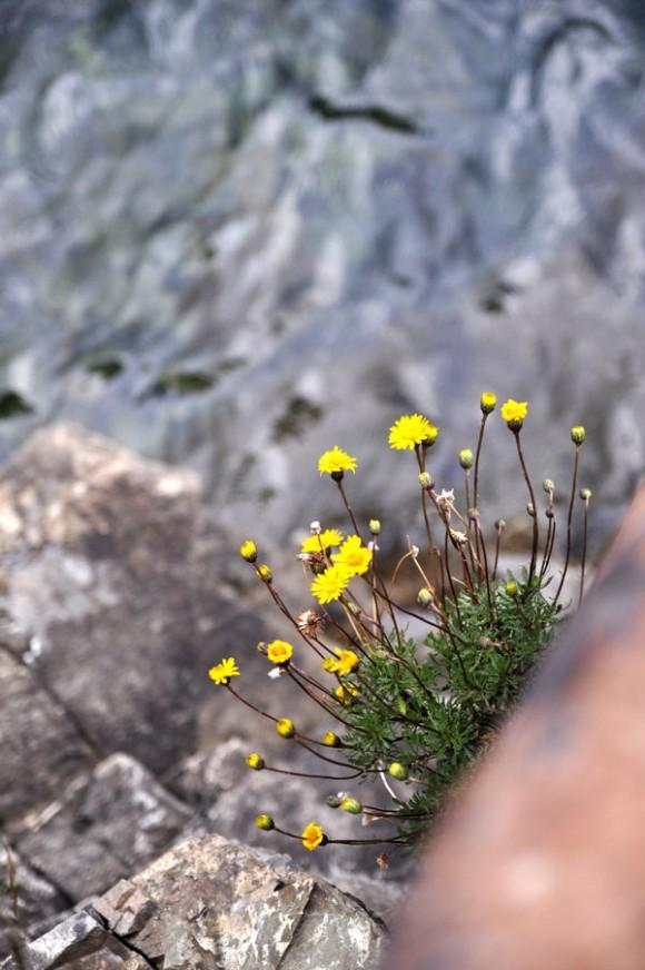 paisajes-patagonia-5
