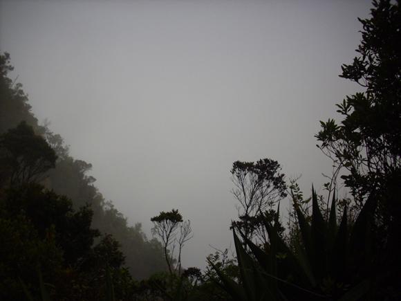 La luz es un cielo plomizo. O una antesala del cielo. Concierto de nubes. Silbido tenue y bíblico. Foto: Aline Marie Rodríguez