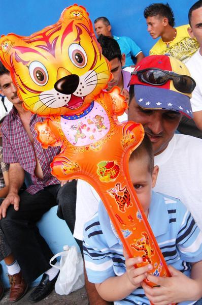 Más de un tigre asomó por el el estadio José Ramón Cepero, como parte de la final de la 50 Serie Nacional de Béisbol, Cuba, el 24 de abril de 2011. AIN FOTO/Osvaldo GUTIERREZ GOMEZ