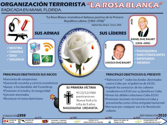 infografia-rosa-blanca