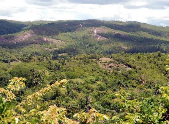 Paisaje apreciable desde la carretera a Luís Lazo, en la provincia de Pinar del Río, el 03 de junio de 2011.  AIN FOTO/Abel PADRÓN PADILLA