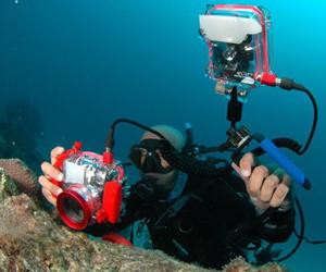 onvidan a buzos del mundo a lid de fotografía subacuática.