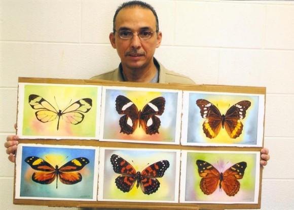 The Butterflies of the Hero
