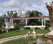 CUBA-CIEGO DE AVILA-ZOOLOGICO-NACIMIENTO HIBRIDO CEBRA Y ASNO