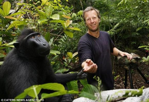 Un mono se roba una cámara y produce sus propias fotografías