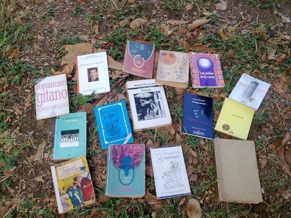 Encuentro Leer Poesía 4