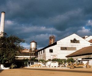 Grupo Azcuba responderá por producción azucarera y derivados en la Isla