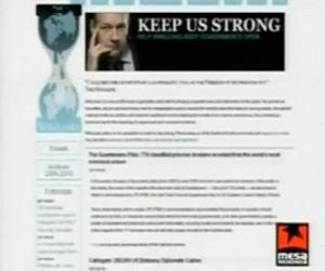 mesa redonda_wikileaks