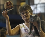 Citrino, un gato azul cubano, gana el premio en la Exposición. Foto: Enrique de la Osa/ Rueters