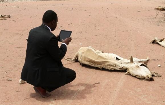 Un trabajador de ayuda humanitaria con un iPad captura una imagen  del cadáver en descomposición de una vaca muerta en Wajir, cerca de la  frontera entre Kenia y Somalia el 23 de julio. (Reuters / Stringer)