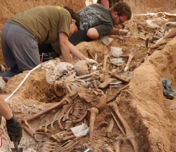 Los arqueólogos limpian minuciosamente los esqueletos hallados en una fosa en Gumiel de Izán (Burgos) con 59 cuerpos. Foto: El País