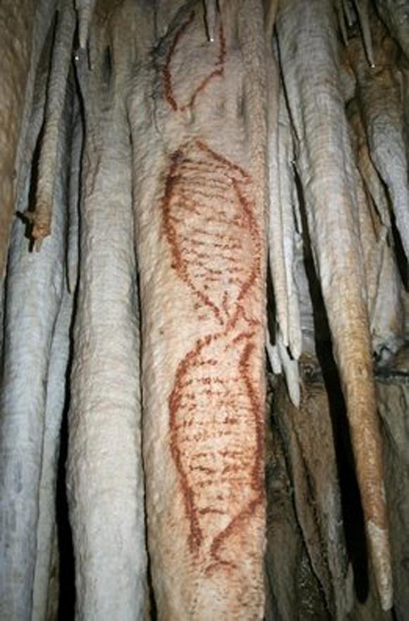 Fotografía facilitada por la Fundación Cueva de Nerja de pinturas rupestres que representan a focas y que podrían tener una antigüedad de al menos 42.000 años/EFE
