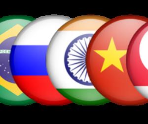 Presidente ruso destaca potencial colectivo de BRICS