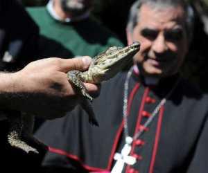 Cocodrilo del Papa