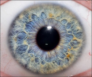 eyeiris