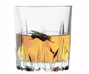 moscones-en-alcohol
