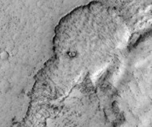¿Imagen de elefante en Marte?