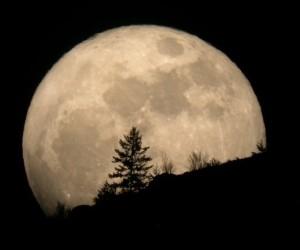 19685-habr-s-per-luna-este-s-bado-la-m-s-grande-y-brillante-del-20