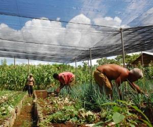 actualizacion-modelo-economico-cubano