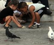 Dar de comer a las palomas en los alrededores del Convento de San Francisco se ha convertido en una tradición habanera. Foto: Ladyrene Pérez/Cubadebate.