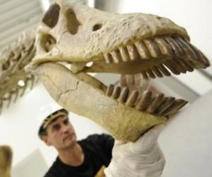 dinosaurio-argentino
