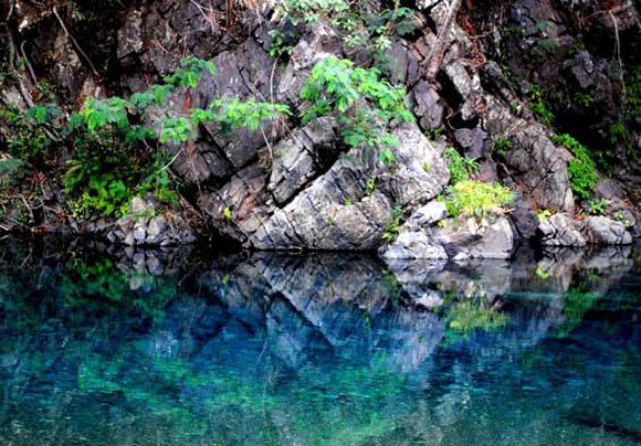 5 de Junio: Día Mundial del Medio Ambiente. Foto: Ladyrene Pérez/Cubadebate.