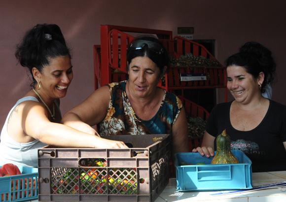Mercados especializados en vegetales. Foto: Ismael Francico/Cubadebate