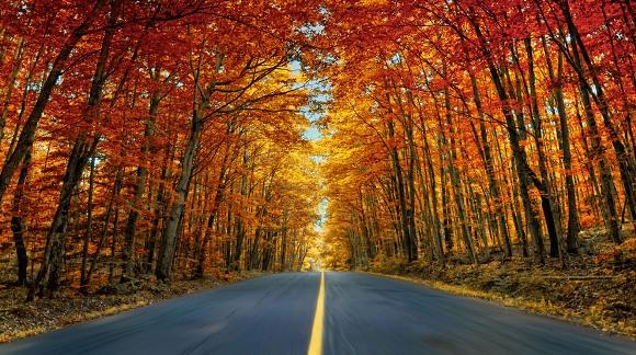 Otoño por exceso de velocidad. Foto: © Alessandro Cancian/National Geographic Traveler Photo Contest