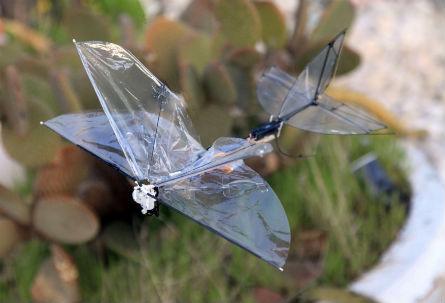 Butterfly la última tecnología en Micro UAV para aplicaciones militares