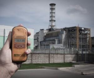 Mutaron árboles sobrevivientes al accidente nuclear de Chernobyl