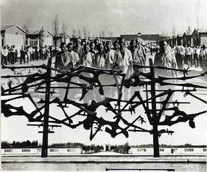El campo de concentración de los nazis en Dachau. Collage