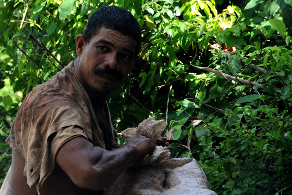 Baracoeso. Foto: Ladyrene Pérez/Cubadebate.