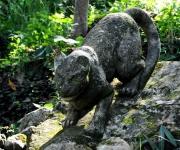 Zoológico de piedra. Foto: Ladyrene Pérez/Cubadebate