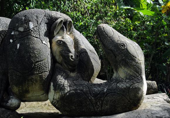 Cebra atrapada por serpiente. Foto: Ladyrene Pérez/Cubadebate