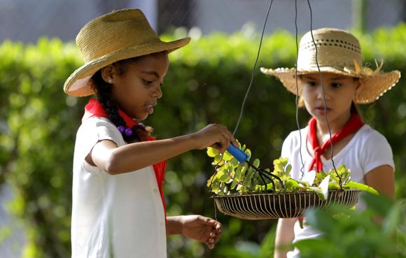 Trabajando en el Huerto Escolar. Foto: Ismael Francisco/Cubadebate
