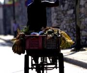 Pregonero. Foto: Ismael Francisco/Cubadebate.