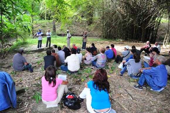 Los premios se entregaron en el escenario natural del Jardín Botánico cienfueguero.