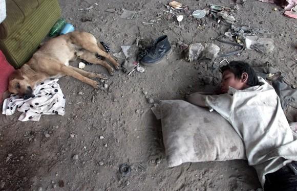 Niño y perro en la calle