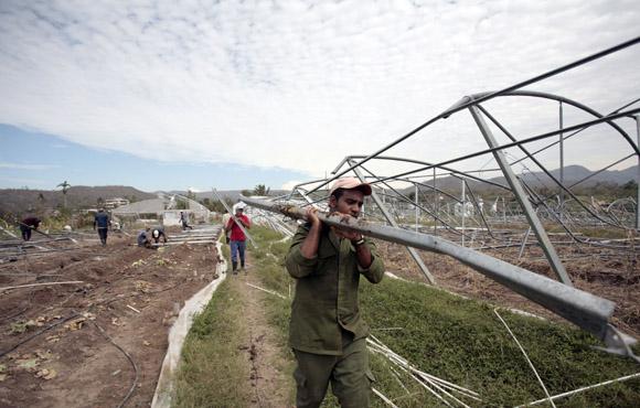 Brigada del Plan de Cítricos de Jaguey Grande en Matanzas, ayudan a restablecer Organopinico santiaguero. Foto: Ismael Francisco/Cubadebate.