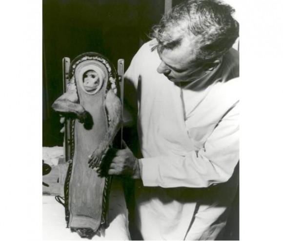 Sam, un macaco que voló a una altura de 88 km en 1958. Foto: NASA.