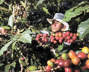 Gobierno colombiano propone diálogo con gremio cafetero