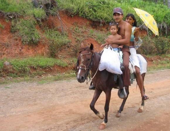 Guajiro en una mula