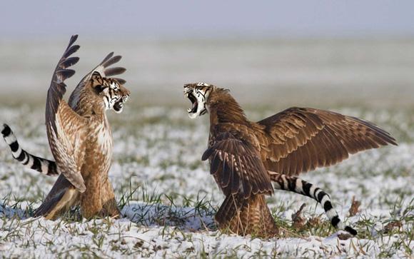 Animales híbridos fantásticos.