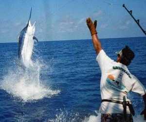 La pesca simple por la caña de pescar volga