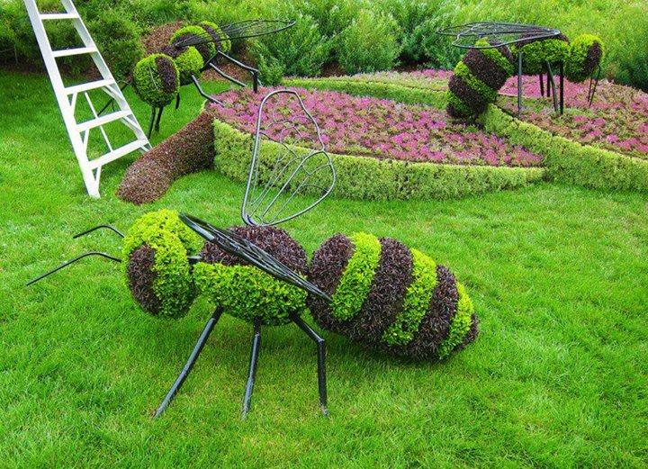 Cubadebate - Imagenes de jardineria ...