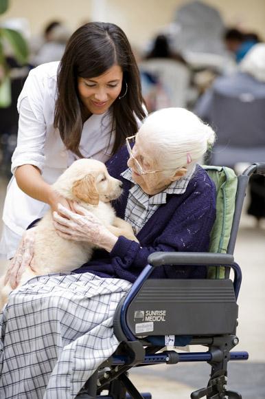 Ancianos asistidos