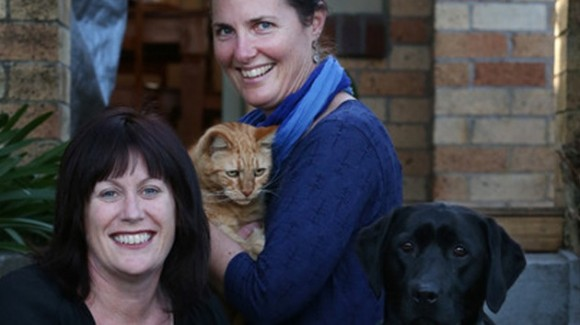 Perro le dona sangre a un gato