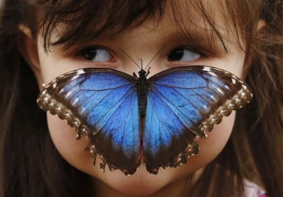 b7b202b6-e3e9-4c2a-8ec9-7f4452707515_mundo-animal-mejores-fotos-24032013